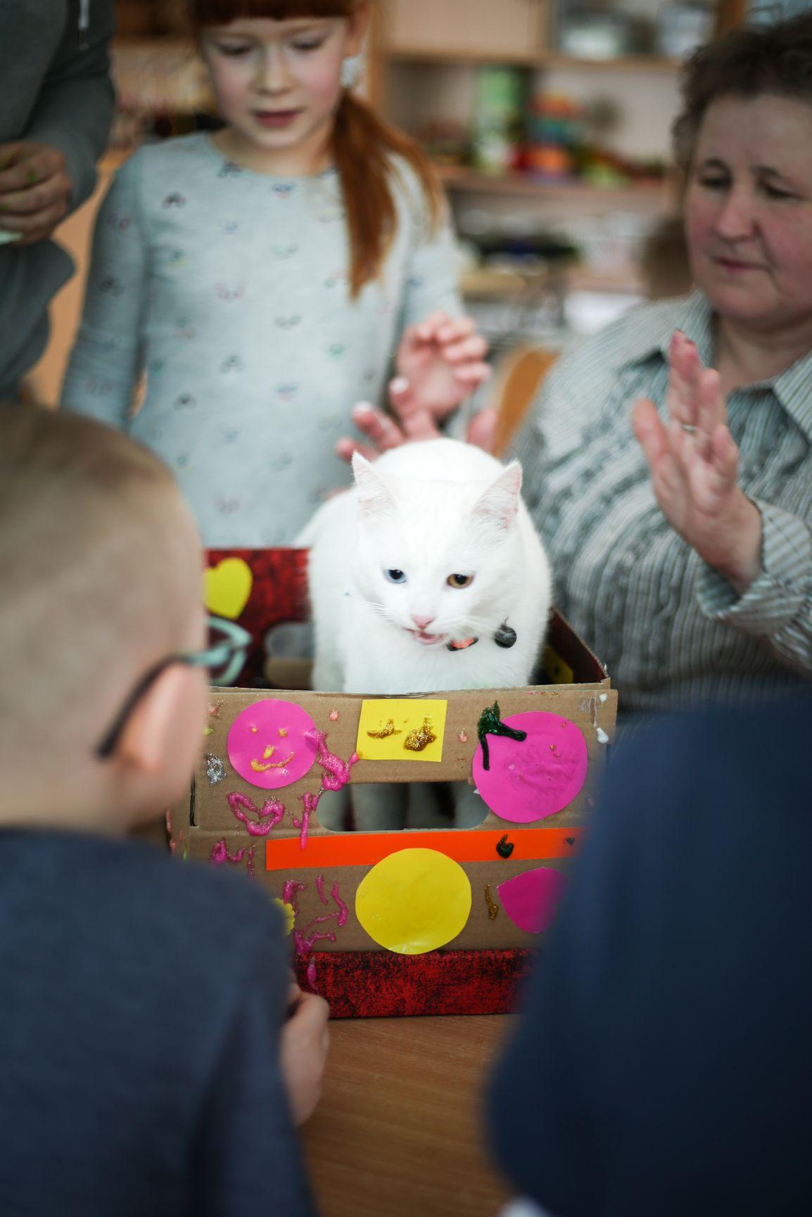Plastyczne działania dzieci z kotem Sky i dla Sky