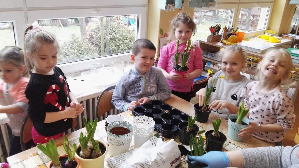 Sadzenie roślin i wiosennych kwiatów